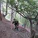 Steiler Waldaufstieg in Richtung Guschaspitz