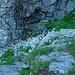 Tome-Spluga, im Aufstieg zum Punkt 2123m