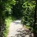 Auf diesem Weg geht es zurück ins Dorf Meiringen