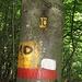 """Il vecchio cartello """"divorato"""" dall'albero."""