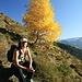 Herbst im Wilden Kaiser