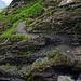 Bergweg vom Bachsee zum Spitzensattel