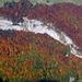 Ausblick auf Herbstwälder
