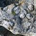 Bizarre Struktur im Granit, fast wie eine Brekkzie