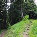Hier Abzweigung vom Gratweg zu dem Aussichtspunkt (Gratgipfel) Wannichnubel