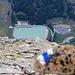 Der Weg vom Almagellerhorn zum Heidbodme ist seit kurzem sehr gut blau/weiss markiert