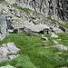 Corte di Cima dell'Alpe Cranzunell