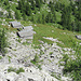 Corte di Mezzo dell'Alpe Cranzunell