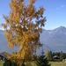 Herbststimmung bei Eggbergen