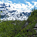Auf dem Harding Icefield Trail