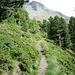 Rückblick auf den Aufstiegsweg zur Hütte