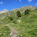 Aufstiegsweg zur Remointse de Pra Gra