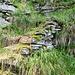 Und weiter gehts von Scengio delle Vacche nach Alpe Pianezza mit Treppenanlagen
