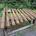 auf dem Naturholz Xylophon kann man sein musikalisches Talent erproben