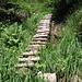 Vi sono anche diverse scale di legno per superare tratti ripidi e viscidi.