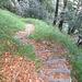 Anche il sentiero che scende al Pian del Vald è un capolavoro.