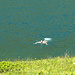 Lago di Matogno...e bagno !