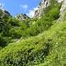 Il ripido valloncello da risalire seguendo il sentiero diretto per il Lago d'Avino