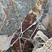 Reepschnurstand als Abseilstelle und Basis für das alte Seil.