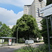 Betty-Hirsch-Platz im Berliner Stadtteil Schmargendorf am Hohenzollerndamm. Das Hochhaus wurde als eines der ältesten in den 1950er Jahren in Berlin (West) erbaut.