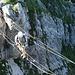Highlight des Brunnistöckli-Klettersteig: die wacklige Dreiseilbrücke!