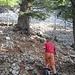 Oberhalb von 1450m beginnt der Zedernwald. Hier ist der Weg besonders steil und steinig.