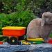 Stillleben: Spielzeug mit Kaninchen