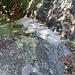 Scrann : due passi su tacche scavate