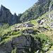 Corte di Cima dell'Alpe di Nassa. Dietro si vede la selletta del Forco
