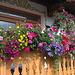 Blumenschmuck vor einem Haus in Moos