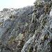 inkl. kleiner Wasserfall über den Steig