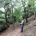 auf dem Steinige Ries Steig