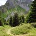 """""""schnell Abstieg"""" Lobhornhütte"""