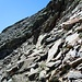 Kleiner Felsriegel am Gipfelhang