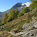 Höhenweg mit Bidergletscher