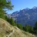 Höhenweg mit Lagginhorn u. Fletschhorn