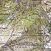Alte Landeskarte mit dem aufgelassenen Weg von Boveta direkt zur Lesgiüna hinunter