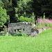 Ruine bei Chiezzo...so nahe am Dorf eine solche Ruine zu sehen, das ist in der Schweiz rar