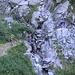 Si scende per attraversare il torrente della Valle di Stuello...