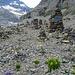Steinmänner bei der Lämmerenhütte