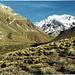 Der erste Blick zum Berg, von Süden, unweit von Puente del Incas