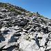 Die Steinwüste, die einen fast auf dem ganzen Weg umgibt, beginnt hier ernsthaft. Man suche die Steinmanndli.