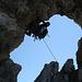 Fledermäuse im Ela-Loch (Foto [U Maveric])