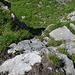 Ausstieg aus dem Riss. Sieht aus dieser Perspektive nicht so aus, sind aber ungefähr 3m.