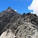 Der Gipfel naht. Man beachte die Wegmarkierungen - wenn man die von oben kommend nicht sieht, steht man schnell mal im Schilf.