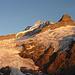Oberer Grindelwaldgletscher mit Lauteraarhorn bis Klein Schreckhorn in der Abendsonne