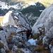 [u mirjam] auf den letzten Metern zum Gipfel