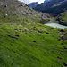 Schwarenbach mit (neuem) Schwarenbachsee
