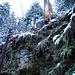 Mitte Leiternweg kommt der Schnee
