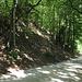 Der Trail hinauf zur Ruine Besserstein.